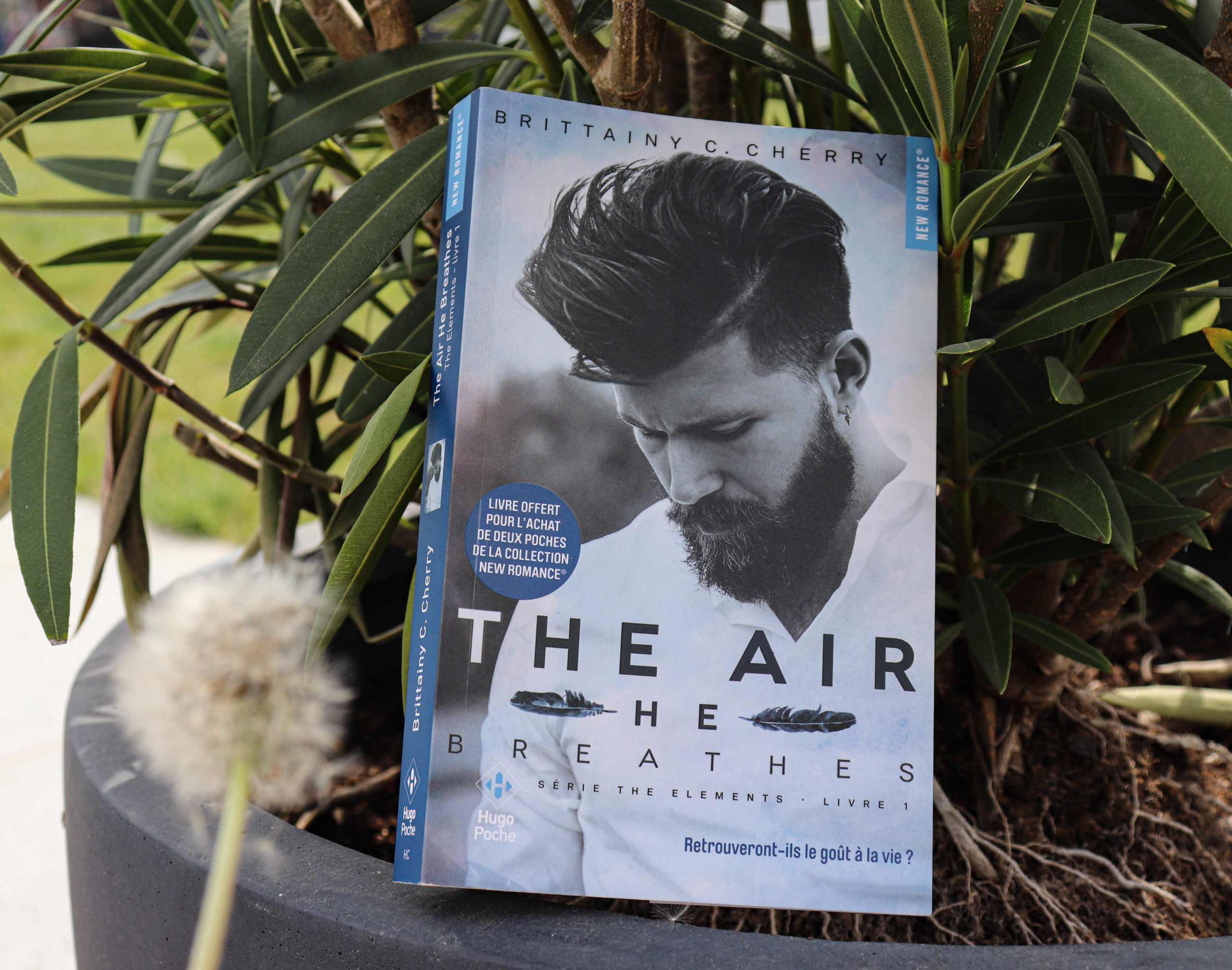 The Elements #1 – The air he breathes – Brittainy C. Cherry