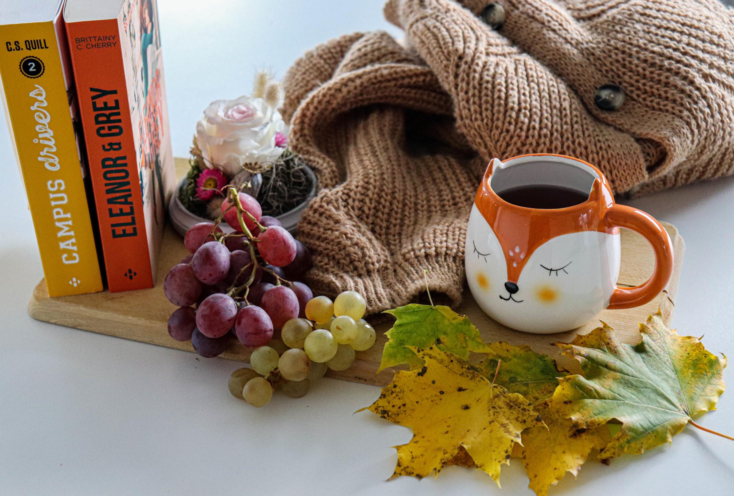 Que faire en automne ? 10 choses à faire en automne